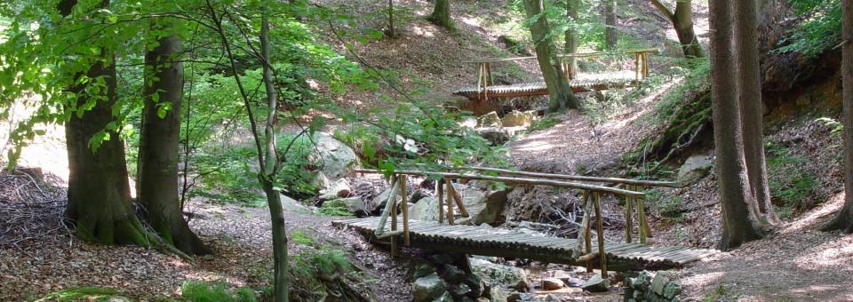HPLesuisse-Bois&forêts-ruisseau-ponts-spa-1